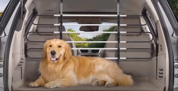 keeping pets secure in vehicle behind your 2nd or 3rd row seats